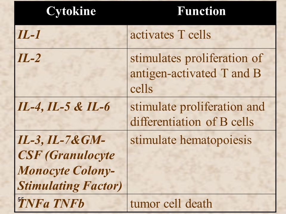 55 FunctionCytokine activates T cellsIL-1 stimulates proliferation of antigen-activated T and B cells IL-2 stimulate proliferation and differentiation