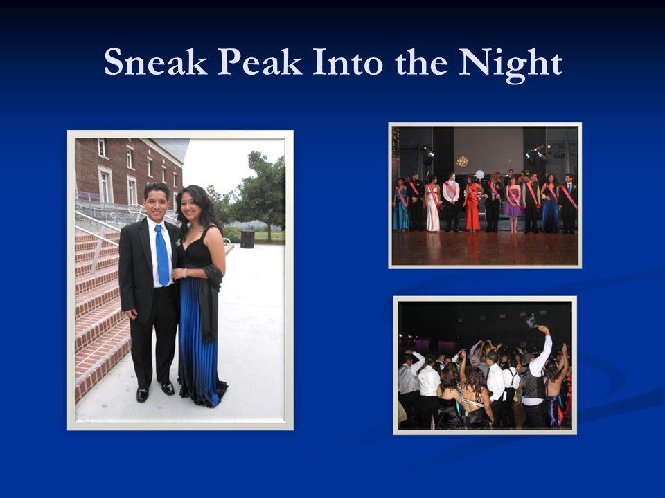 Sneak Peak Into the Night