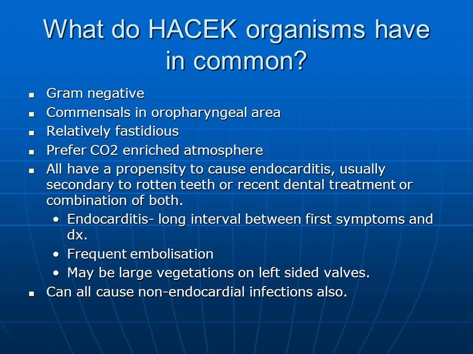 What do HACEK organisms have in common? Gram negative Gram negative Commensals in oropharyngeal area Commensals in oropharyngeal area Relatively fasti