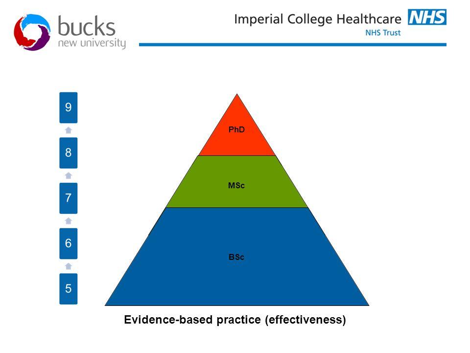 Evidence-based practice (effectiveness)