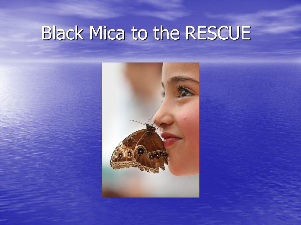 Black Mica to the RESCUE Black Mica to the RESCUE
