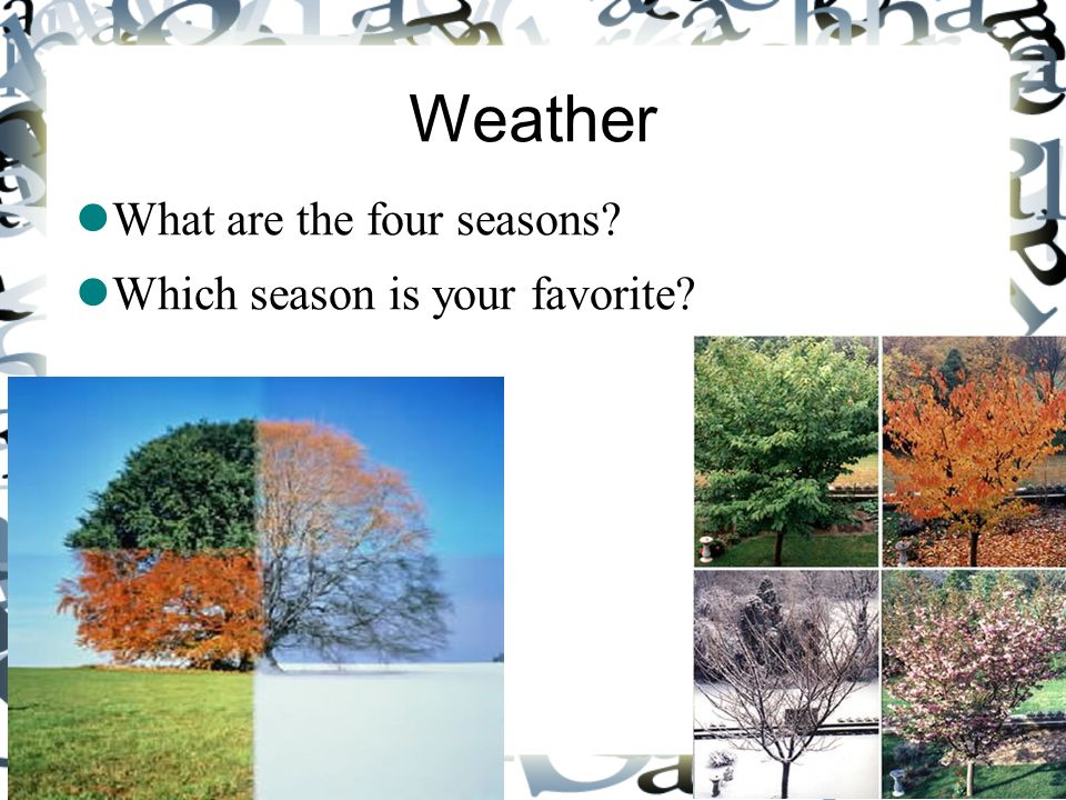 Weather What are the four seasons? Which season is your favorite?