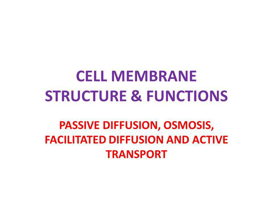 CELL MEMBRANE STRUCTURE & FUNCTIONS PASSIVE DIFFUSION, OSMOSIS, FACILITATED DIFFUSION AND ACTIVE TRANSPORT
