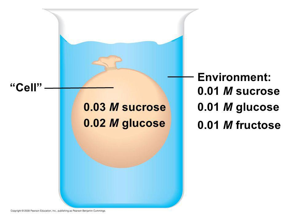 Environment: 0.01 M sucrose 0.01 M glucose 0.01 M fructose Cell 0.03 M sucrose 0.02 M glucose