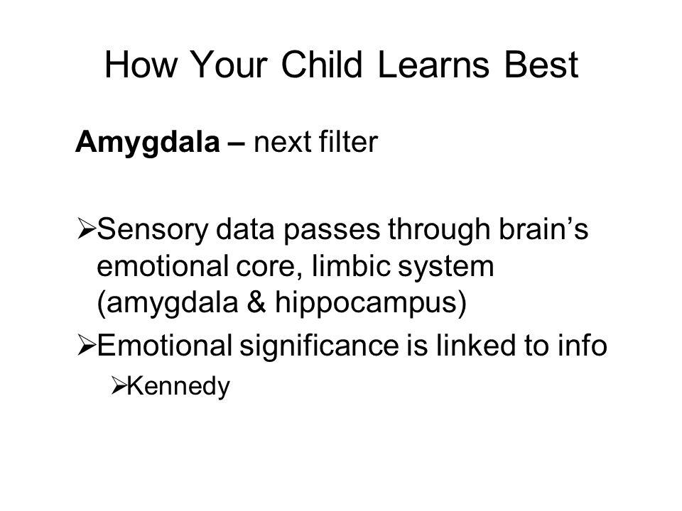 How Your Child Learns Best Amygdala – next filter Sensory data passes through brains emotional core, limbic system (amygdala & hippocampus) Emotional