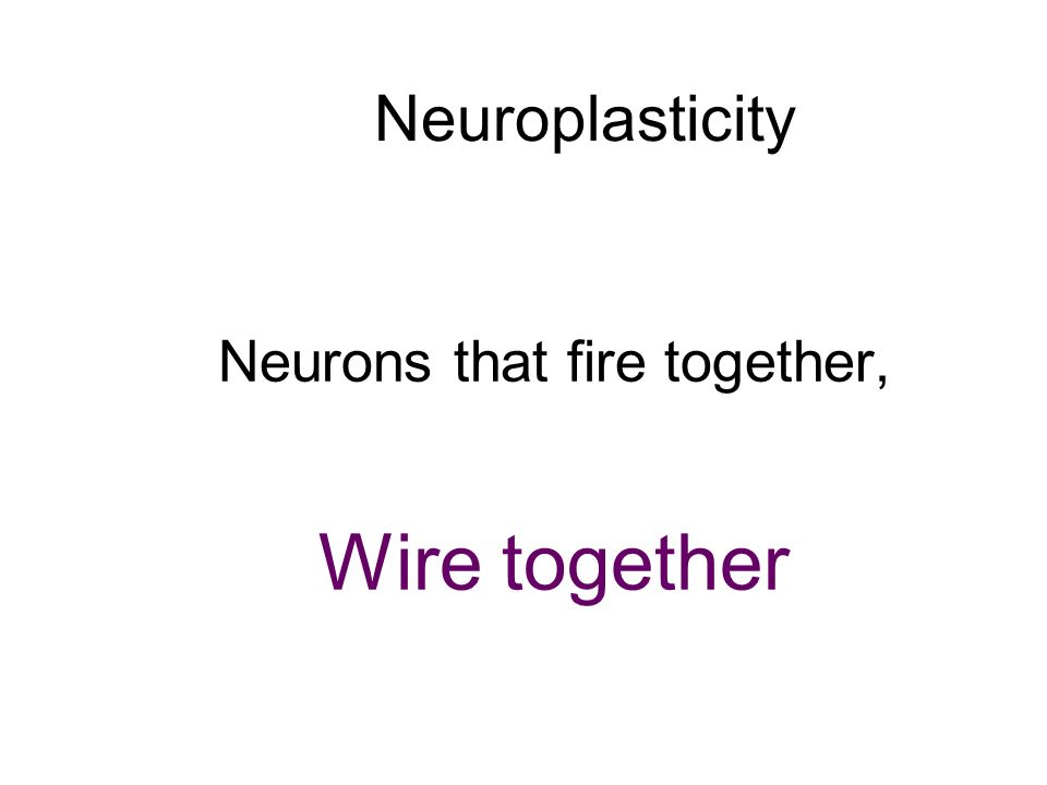 Neuroplasticity Neurons that fire together, Wire together