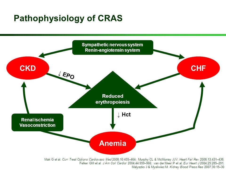 Pathophysiology of CRAS Anemia Reduced erythropoiesis Sympathetic nervous system Renin-angiotensin system Renal ischemia Vasoconstriction CKDCHF EPO M