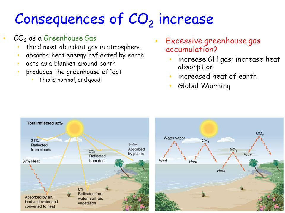 Consequences of CO 2 increase CO 2 as a Greenhouse Gas third most abundant gas in atmosphere absorbs heat energy reflected by earth acts as a blanket