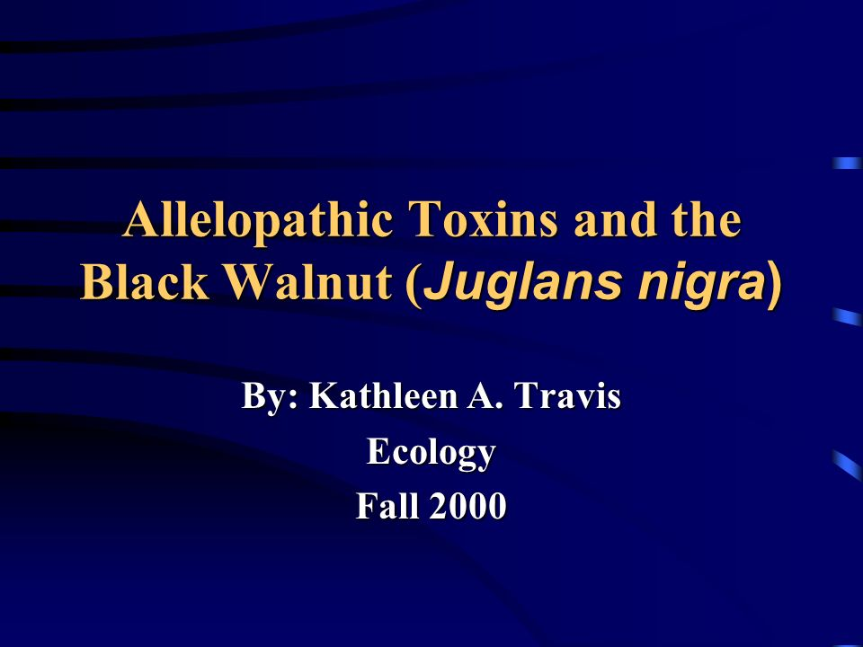 Allelopathic Toxins and the Black Walnut( Juglans nigra) Allelopathic Toxins and the Black Walnut ( Juglans nigra) By: Kathleen A. Travis Ecology Fall