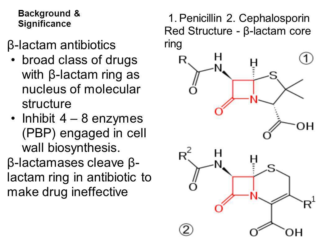 Background & Significance 1.Penicillin 2. Cephalosporin Red Structure - β-lactam core ring β-lactam antibiotics broad class of drugs with β-lactam rin