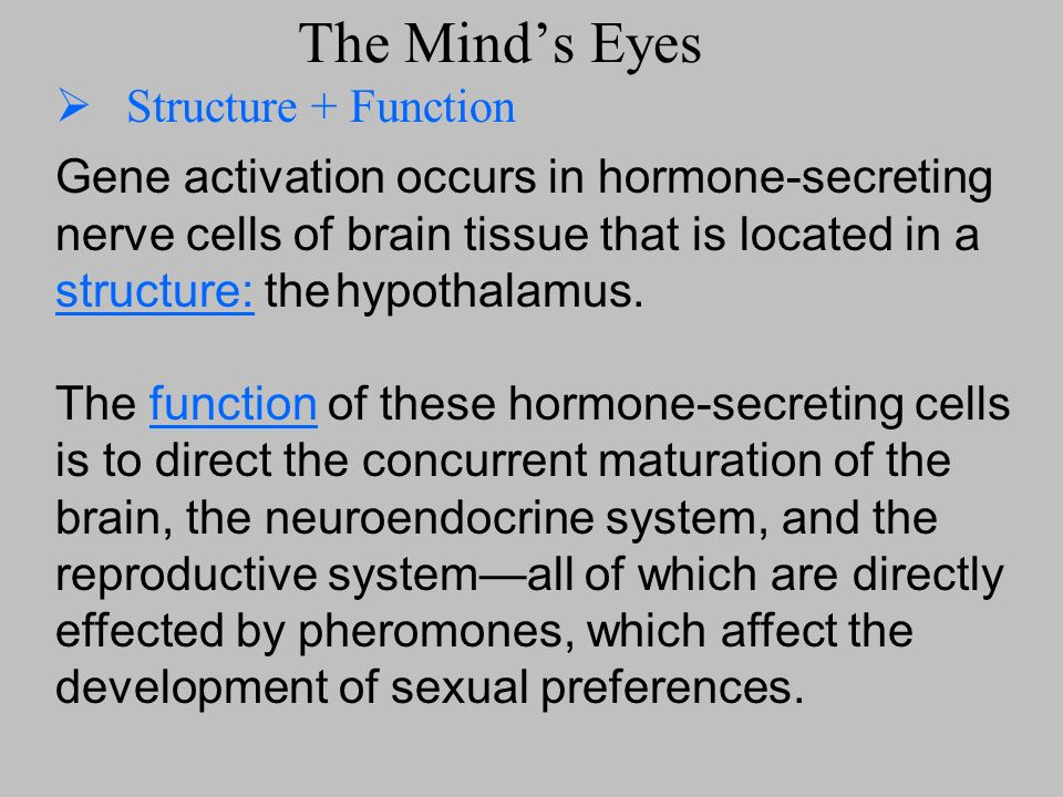 The Minds Eyes Structure + Function Gene activation occurs in hormone-secreting nerve cells of brain tissue that is located in a structure: the hypoth