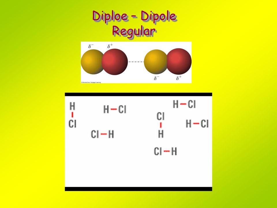 Diploe – Dipole Regular Regular