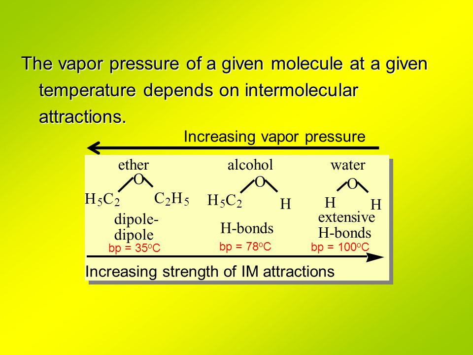 The vapor pressure of a given molecule at a given temperature depends on intermolecular attractions. C 2 H 5 H 5 C 2 H H 5 C 2 H H wateralcoholether I