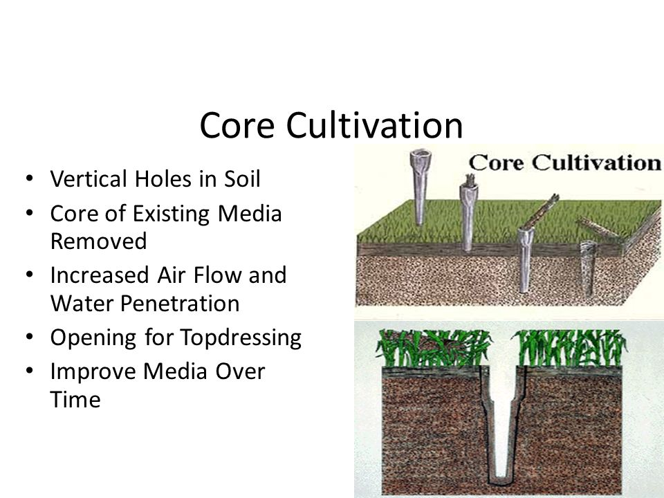 Core Cultivation Vertical Holes in Soil Core of Existing Media Removed Increased Air Flow and Water Penetration Opening for Topdressing Improve Media