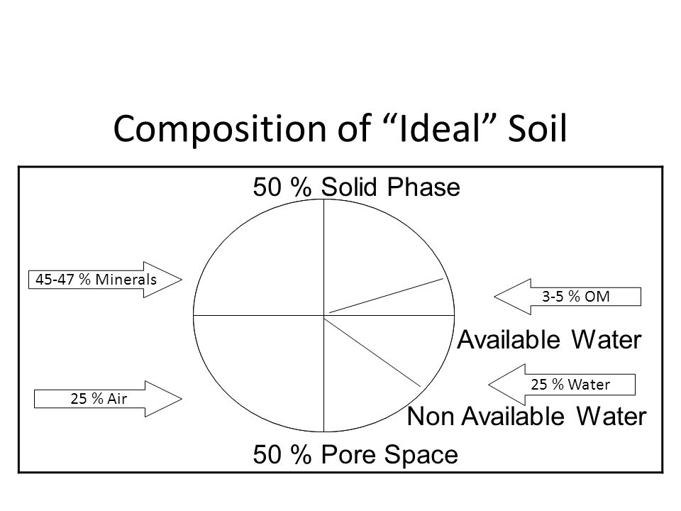 Composition of Ideal Soil 50 % Solid Phase Available Water Non Available Water 50 % Pore Space 25 % Air 45-47 % Minerals 3-5 % OM 25 % Water