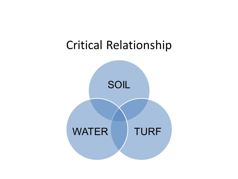 Critical Relationship SOIL TURFWATER