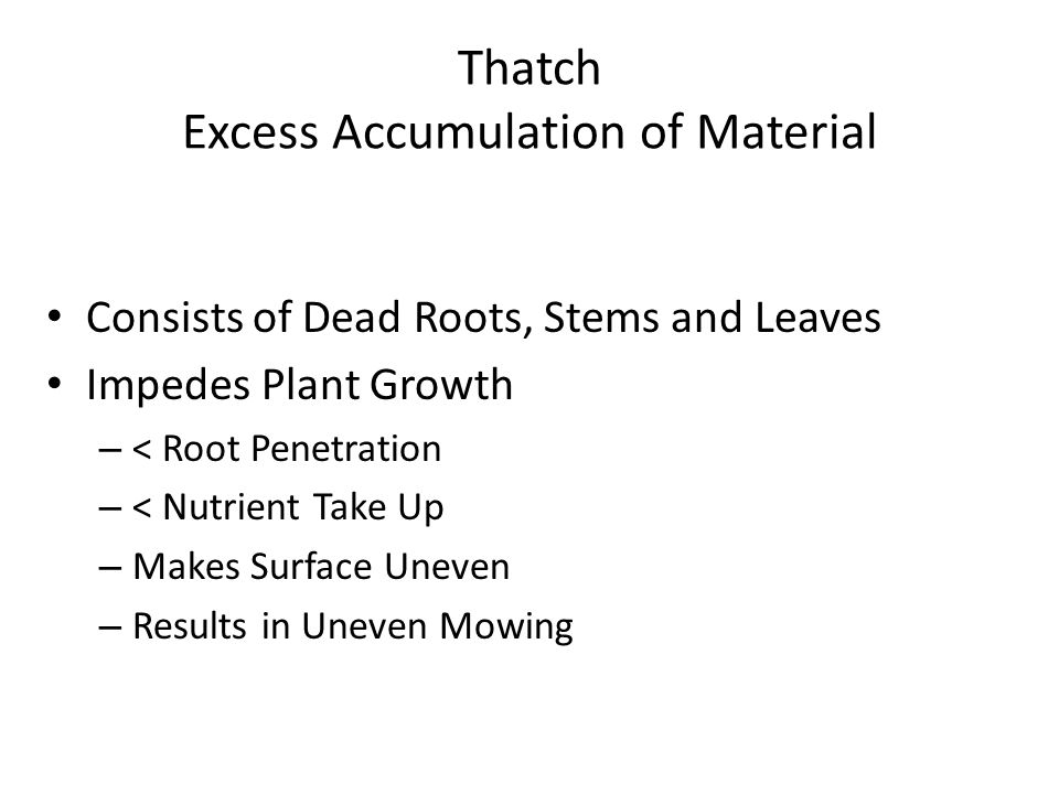 Thatch Excess Accumulation of Material Consists of Dead Roots, Stems and Leaves Impedes Plant Growth – < Root Penetration – < Nutrient Take Up – Makes