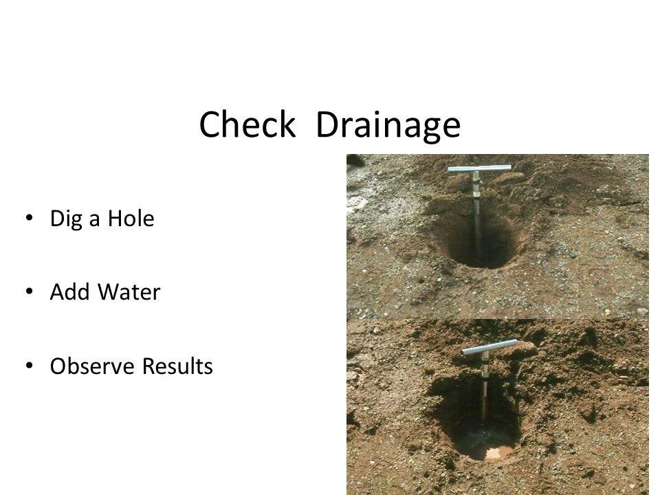 Check Drainage Dig a Hole Add Water Observe Results