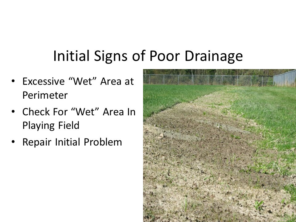 Initial Signs of Poor Drainage Excessive Wet Area at Perimeter Check For Wet Area In Playing Field Repair Initial Problem