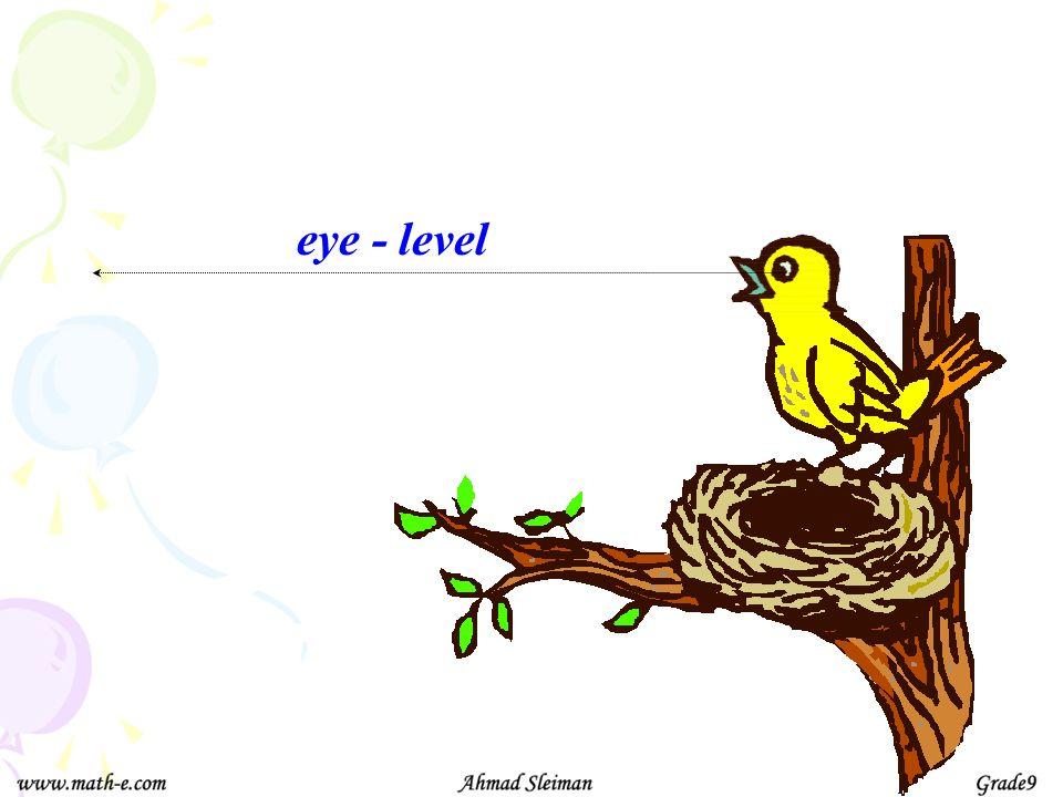 eye - level