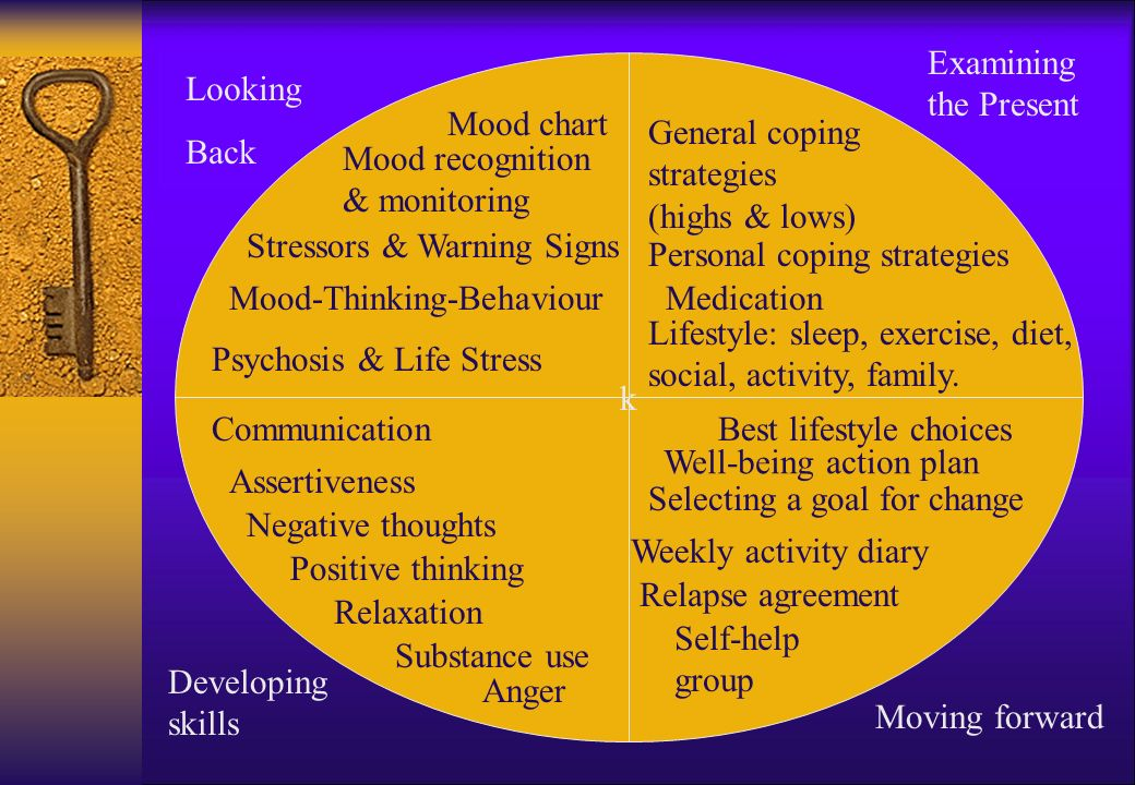 k Looking Back Mood chart Mood recognition & monitoring Stressors & Warning Signs Mood-Thinking-Behaviour Psychosis & Life Stress Examining the Present General coping strategies (highs & lows) Personal coping strategies Medication Lifestyle: sleep, exercise, diet, social, activity, family.