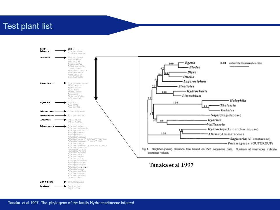 Test plant list Tanaka et al 1997. The phylogeny of the family Hydrocharitaceae inferred Tanaka et al 1997