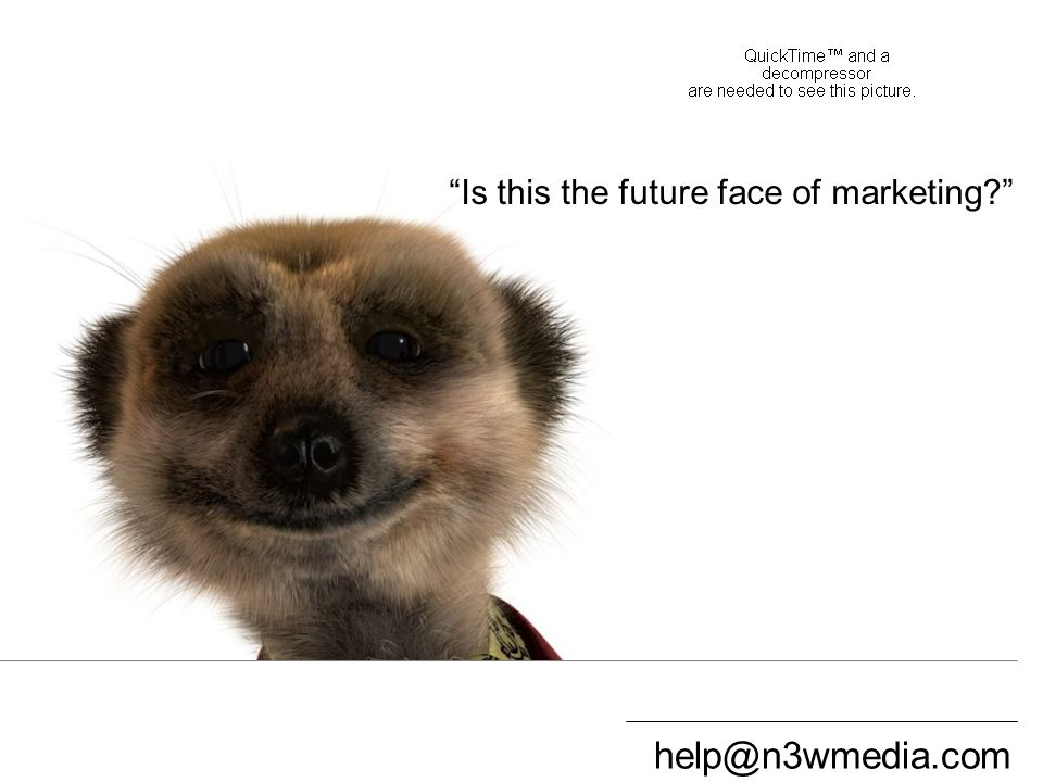 help@n3wmedia.com Compare the Meerkat 1 Is this the future face of marketing