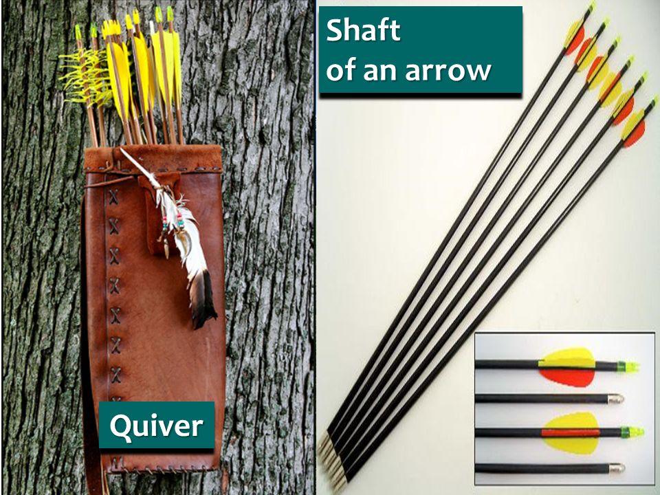 Shaft of an arrow Shaft QuiverQuiver
