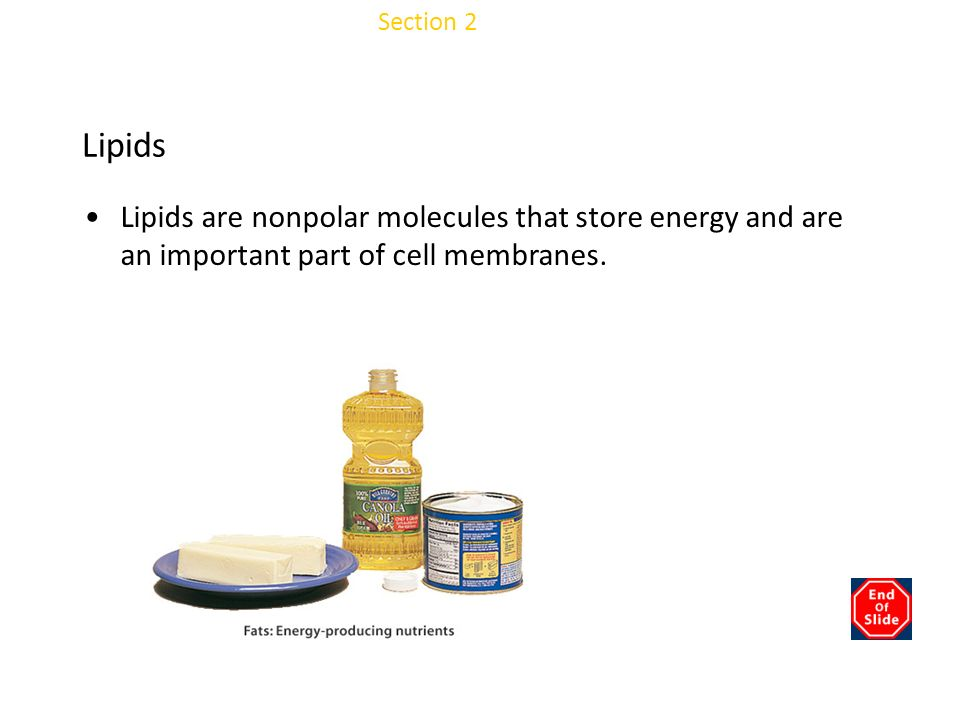 Chapter 3 Lipids Lipids are nonpolar molecules that store energy and are an important part of cell membranes.