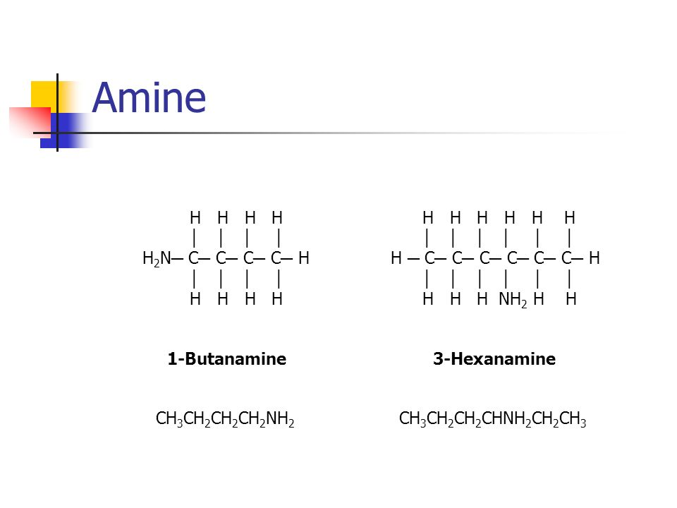 Amine H H H H H 2 N C C C C H H H H H 1-Butanamine 3-Hexanamine H H H H H H H C C C C C C H H H H NH 2 H H CH 3 CH 2 CH 2 CH 2 NH 2 CH 3 CH 2 CH 2 CHN