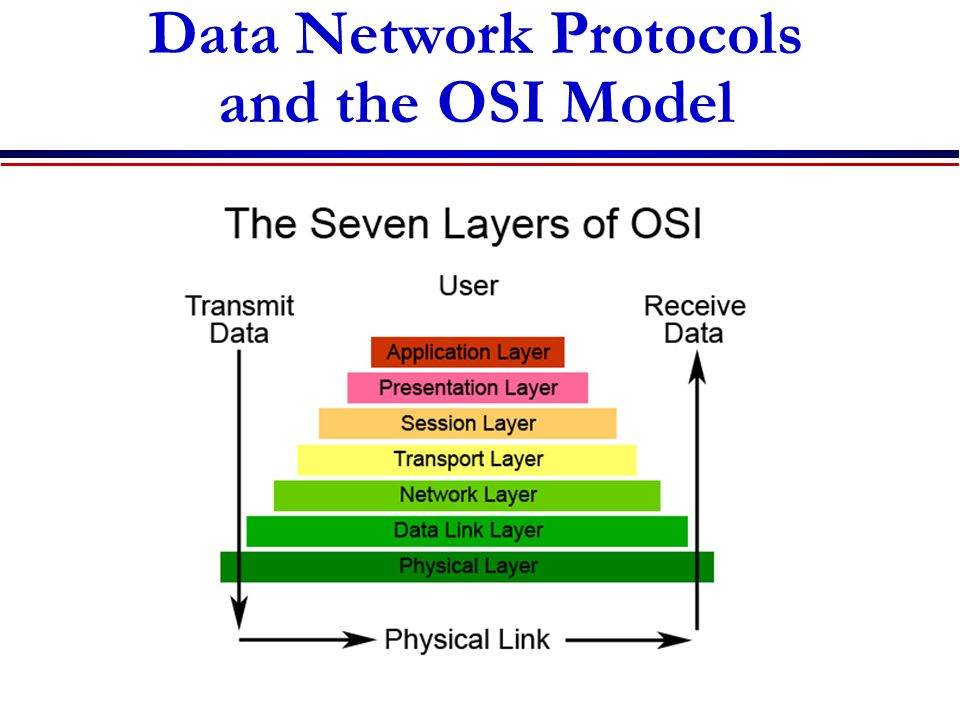Data Network Protocols and the OSI Model