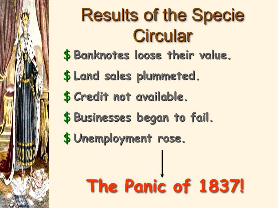 The Specie Circular (1836) wildcat banks.wildcat banks.