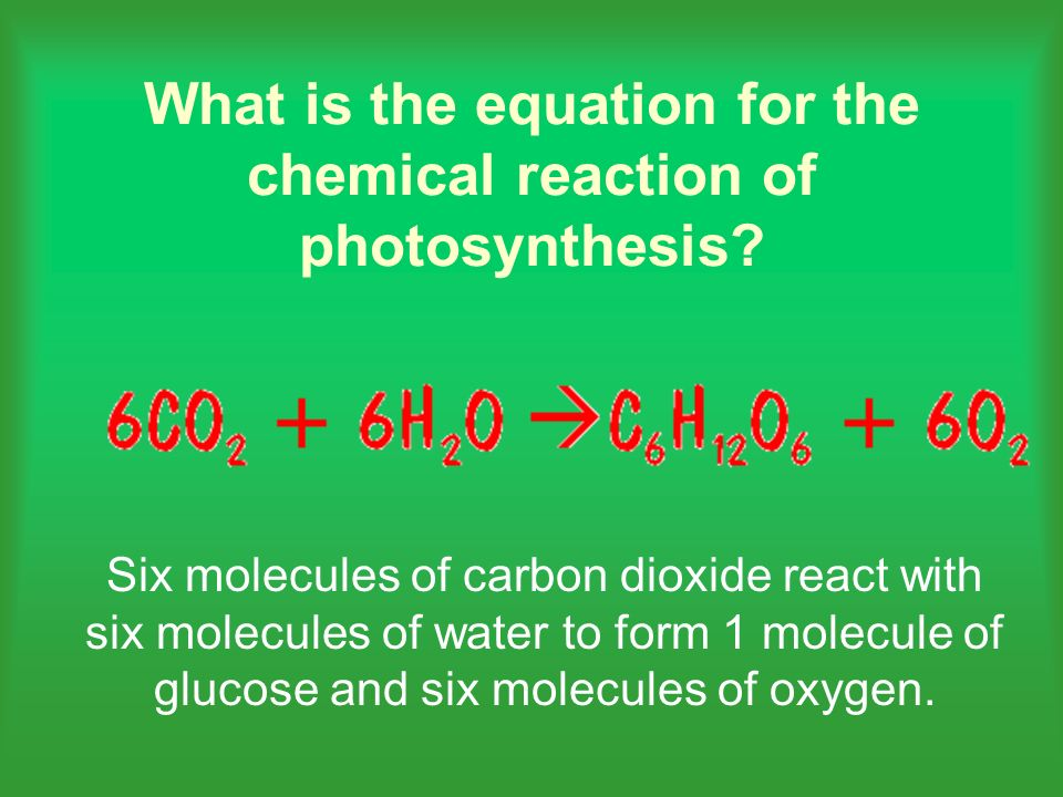 Six molecules of carbon dioxide react with six molecules of water to form 1 molecule of glucose and six molecules of oxygen.