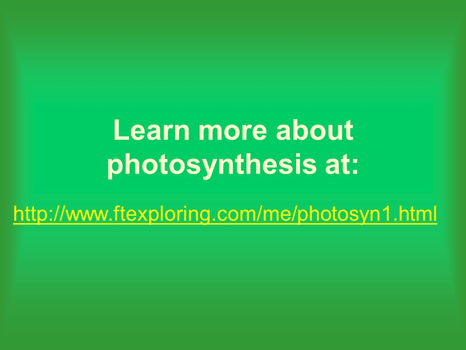 Learn more about photosynthesis at: http://www.ftexploring.com/me/photosyn1.html