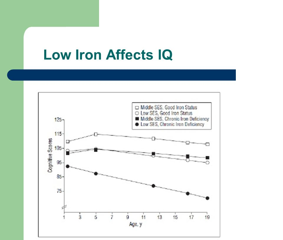 Low Iron Affects IQ