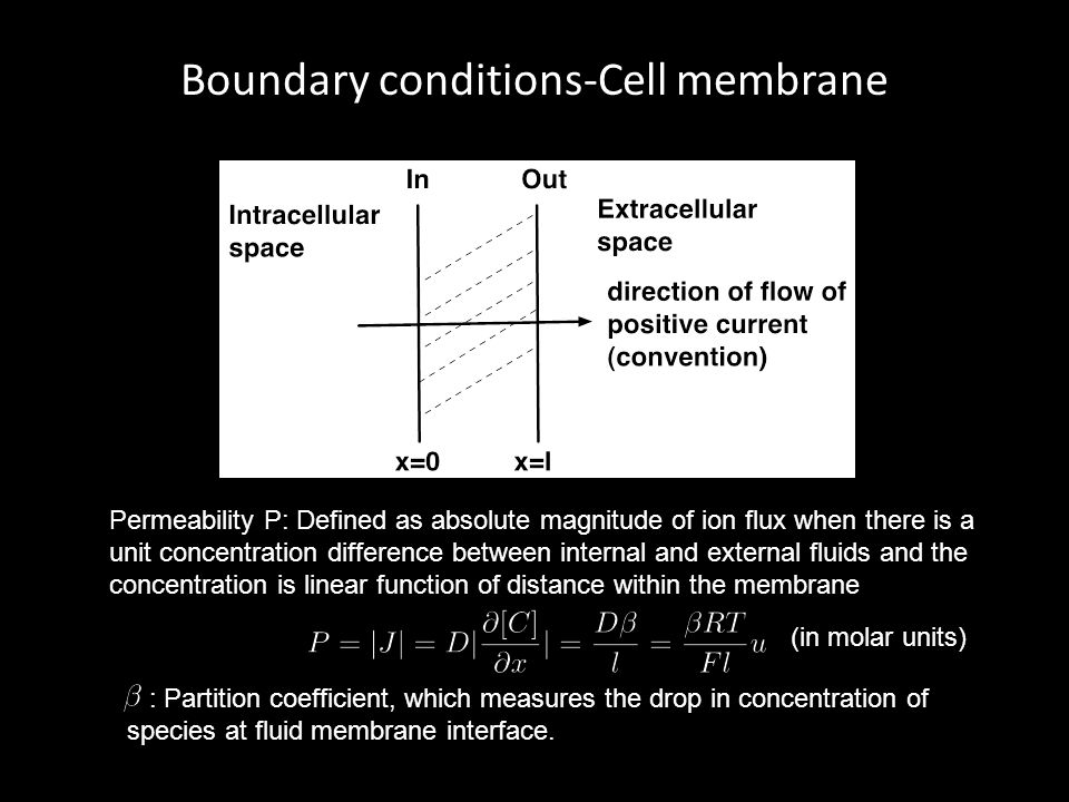 Boundary conditions-Cell membrane Permeability P: Defined as absolute magnitude of ion flux when there is a unit concentration difference between inte