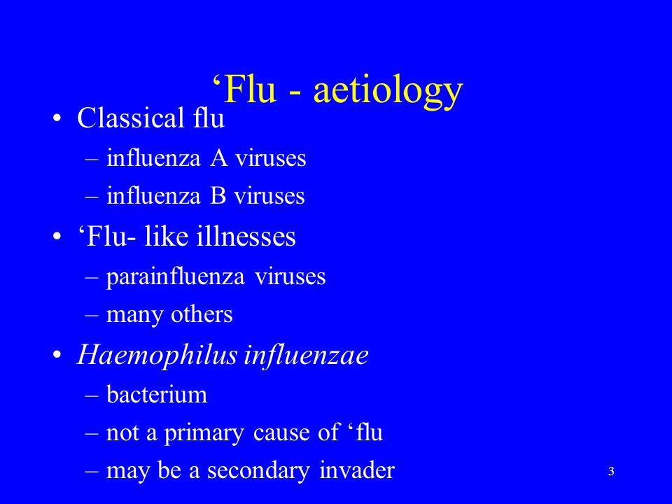 3 Flu - aetiology Classical flu –influenza A viruses –influenza B viruses Flu- like illnesses –parainfluenza viruses –many others Haemophilus influenz