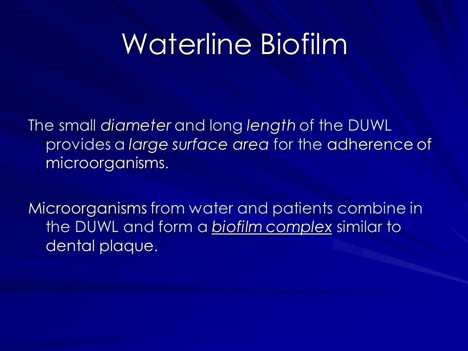 Waterline Biofilm The small diameter and long length of the DUWL provides a large surface area for the adherence of microorganisms. Microorganisms fro