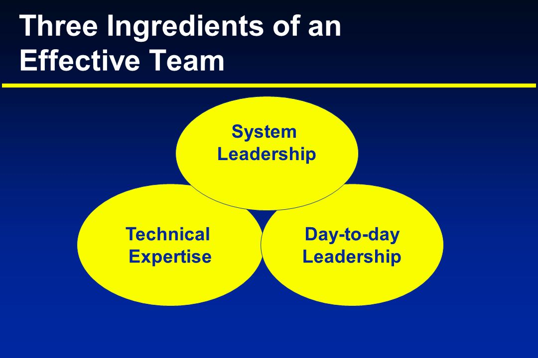 Technical Expertise Day-to-day Leadership System Leadership Three Ingredients of an Effective Team