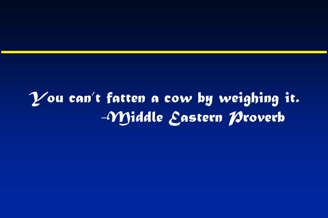 You cant fatten a cow by weighing it. -Middle Eastern Proverb