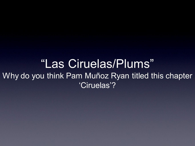 Las Ciruelas/Plums Why do you think Pam Muñoz Ryan titled this chapter Ciruelas?