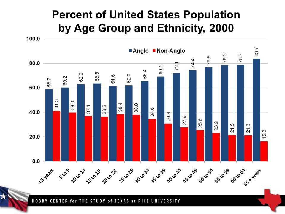 Percent of United States Population by Age Group and Ethnicity, 2000
