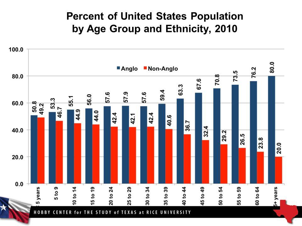Percent of United States Population by Age Group and Ethnicity, 2010