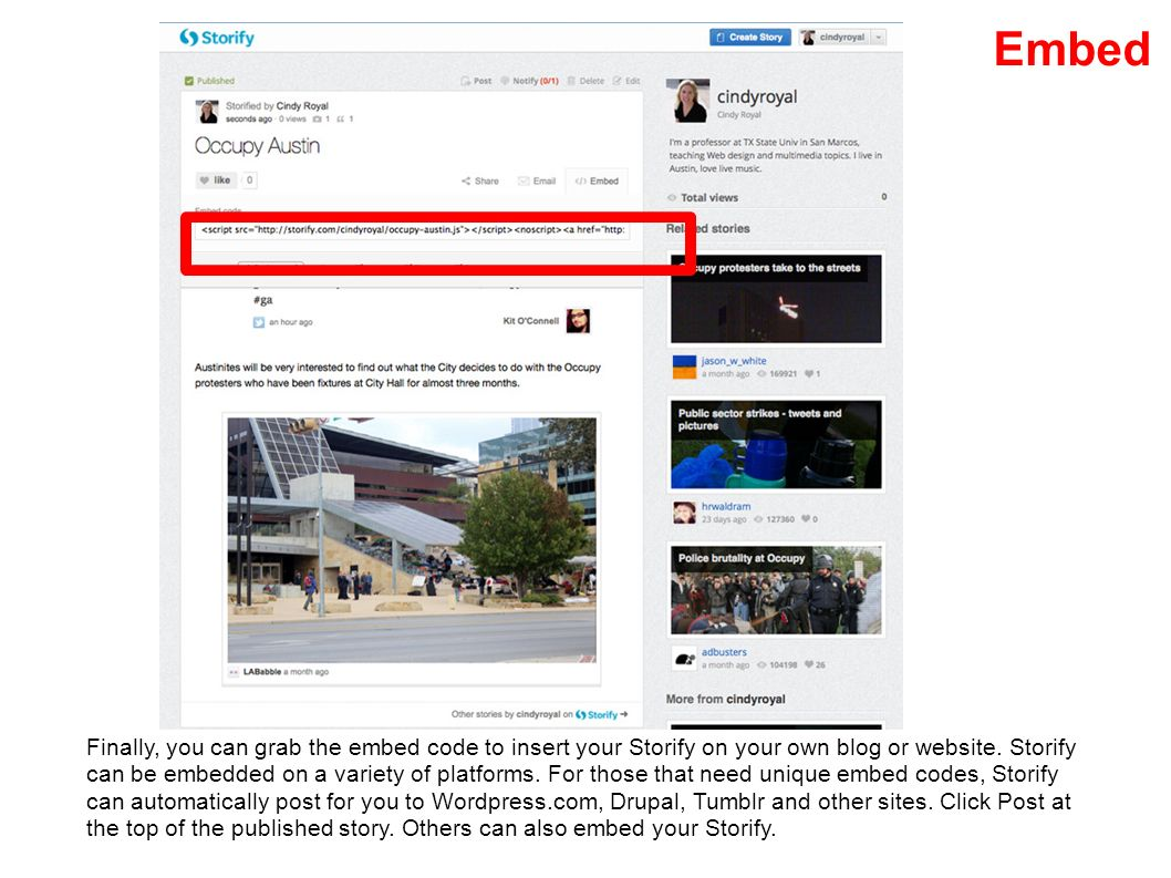 Embed Finally, you can grab the embed code to insert your Storify on your own blog or website.