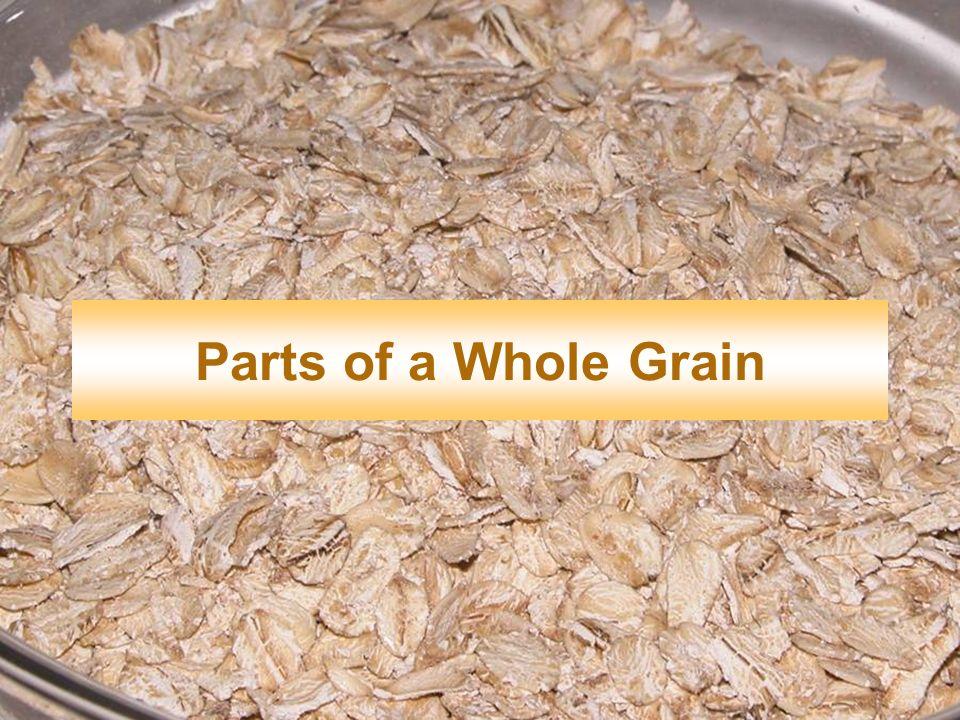 Parts of a Whole Grain