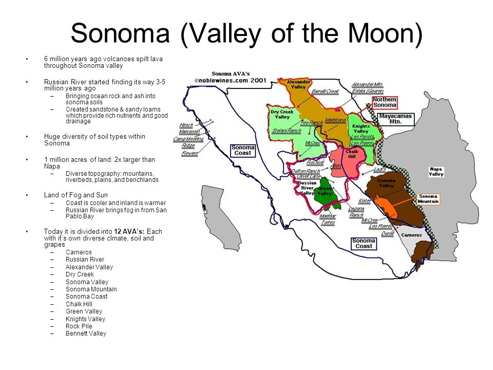 Sonoma (Valley of the Moon) 6 million years ago volcanoes spilt lava throughout Sonoma valley Russian River started finding its way 3-5 million years ago –Bringing ocean rock and ash into sonoma soils –Created sandstone & sandy loams which provide rich nutrients and good drainage Huge diversity of soil types within Sonoma 1 million acres of land: 2x larger than Napa –Diverse topography: mountains, riverbeds, plains, and benchlands Land of Fog and Sun –Coast is cooler and inland is warmer –Russian River brings fog in from San Pablo Bay Today it is divided into 12 AVAs: Each with its own diverse clmate, soil and grapes –Carneros –Russian River –Alexander Valley –Dry Creek –Sonoma Valley –Sonoma Mountain –Sonoma Coast –Chalk Hill –Green Valley –Knights Valley –Rock Pile –Bennett Valley
