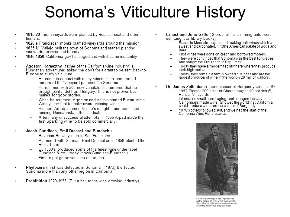 Sonomas Viticulture History 1815-20 First vineyards were planted by Russian seal and otter hunters. 1820s Franciscan monks planted vineyards around th