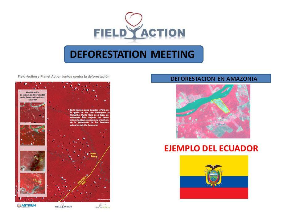 DEFORESTATION MEETING DEFORESTACION EN AMAZONIA EJEMPLO DEL ECUADOR