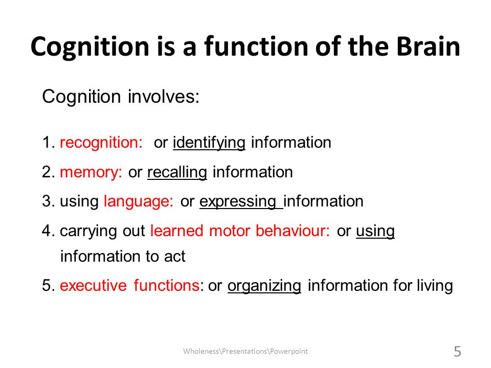 Cognition is a function of the Brain Cognition involves: 1. recognition: or identifying information 2. memory: or recalling information 3. using langu