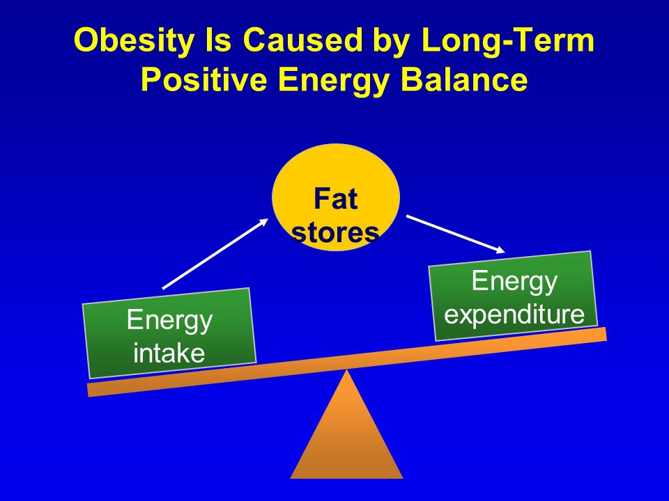 Obesity Is Caused by Long-Term Positive Energy Balance Fat stores Energy intake Energy expenditure